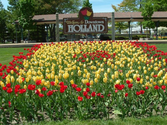 Holland_MI_Tulips_01